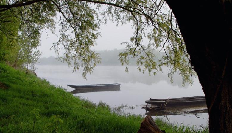 Vente du mois sur QCQBM La Cave : Vins de Loire au fil de l'eau